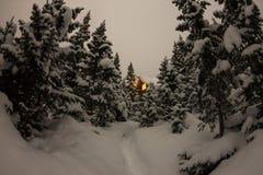 Alloggi il chalet durante precipitazioni nevose nella foresta dell'inverno degli alberi a nig Fotografia Stock