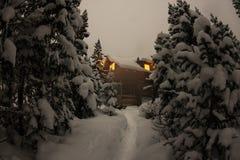 Alloggi il chalet durante precipitazioni nevose nella foresta dell'inverno degli alberi a nig Immagini Stock Libere da Diritti