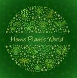 Alloggi il concetto delle piante per il negozio del Garden Center, del fiore & di fiorista Immagini Stock