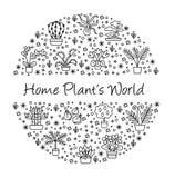 Alloggi il concetto delle piante per il negozio del Garden Center, del fiore & di fiorista V Fotografie Stock