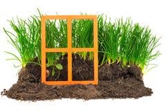 Alloggi il concetto verde con la finestra, l'erba ed il suolo arancio di legno Fotografia Stock
