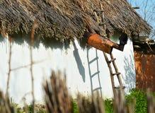 Alloggi il dettaglio con il tetto a lamella tradizionale nel delta del Danubio Immagini Stock Libere da Diritti