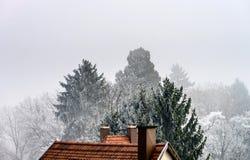 Alloggi il tetto e gli alberi congelati in poco villaggio francese Immagine Stock