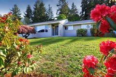Alloggi l'esterno con i rododendri di fioritura sull'iarda anteriore Fotografia Stock