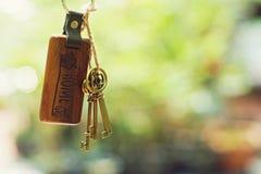 Alloggi la chiave con l'anello portachiavi domestico in buco della serratura con il fondo del giardino di verde della sfuocatura, Immagine Stock