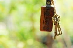 Alloggi la chiave con l'anello portachiavi domestico in buco della serratura con il fondo regolare del giardino di verde della sf Immagini Stock Libere da Diritti