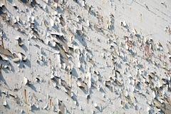 Alloggi la parete con pittura di sfaldamento, struttura del fondo Fotografie Stock Libere da Diritti