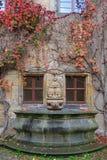 Alloggi la parete, la fontana con le viti variopinte e le foglie di autunno Fotografia Stock