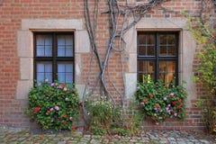 Alloggi le finestre con i fiori, le viti ed il muro di mattoni a Norimberga Immagini Stock Libere da Diritti