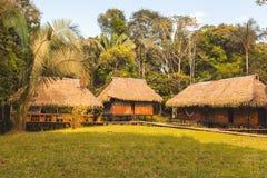 Alloggi in mezzo alla giungla amazzoniana, fauna selvatica di Cuyabeno Fotografia Stock