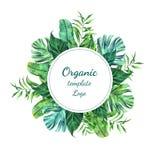 Alloggi nell'ambito del logo di una forma rotonda delle foglie di palma tropicali i Immagine Stock