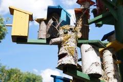 """Alloggi per il †degli uccelli """"un nido per deporre le uova Fotografia Stock Libera da Diritti"""