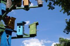 """Alloggi per il †degli uccelli """"un nido per deporre le uova Fotografie Stock Libere da Diritti"""