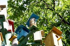 """Alloggi per il †degli uccelli """"un nido per deporre le uova Immagine Stock"""