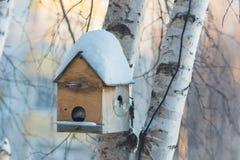 Alloggi per l'inverno degli uccelli Fotografia Stock Libera da Diritti