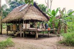 Alloggi, riserva faunistica di Cuyabeno, la provincia di Sucumbios, ame del sud Fotografia Stock Libera da Diritti