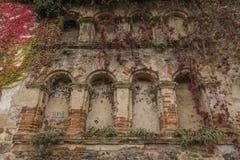 Alloggi vicino al fiume la Moldava ed alla rovina di Divci Kamen del castello nell'autunno Fotografia Stock Libera da Diritti