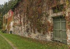 Alloggi vicino al fiume la Moldava ed alla rovina di Divci Kamen del castello nell'autunno Fotografie Stock Libere da Diritti