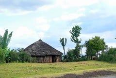 Alloggio africano nazionale - alloggi il primo piano sul fondo della natura. A Immagini Stock