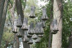 Alloggio della colonia del pipistrello in legno Immagini Stock Libere da Diritti