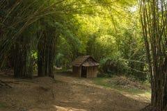 Alloggio provvisorio nella foresta di bambù Fotografie Stock