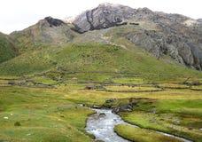 Alloggio tradizionale per l'allevamento bestiame nell'Alto-elevazione Perù Immagine Stock Libera da Diritti