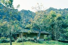Alloggio, Vang Vieng - immagine di riserva Fotografia Stock
