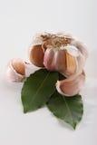 Alloro di baia e dell'aglio Immagini Stock