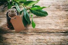 Alloro ed olio freschi su fondo di legno Fotografia Stock Libera da Diritti