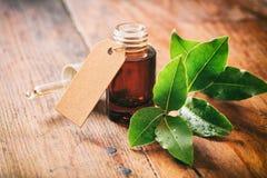 Alloro ed olio freschi su fondo di legno Fotografia Stock
