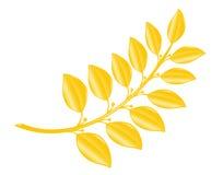 Alloro-filiale in oro Fotografia Stock Libera da Diritti