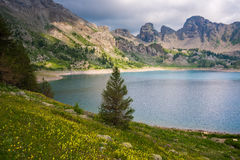 Allos lake at National Park of Mercantour, Alps (France) Royalty Free Stock Photos