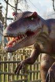 Allosauro - allosauro fragilis Immagini Stock