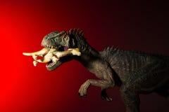 Allosauro che morde un più piccolo dinosauro con la luce del punto sulla testa e sulla luce rossa Fotografie Stock
