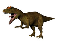 Allosaurus 3. Meat eating Dinosaur allosaurus isolated Stock Photo