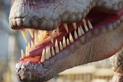 Allosaurus - Allosaurus fragilis Royalty Free Stock Photo