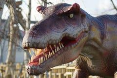 Allosaurus - Allosaurus fragilis. Portrait of an extinct Allosaurus - Allosaurus fragilis Stock Photography