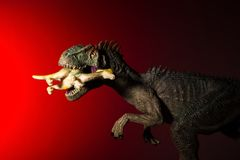 Allosaurus biting a smaller dinosaur with spot light on the head and red light. On background Stock Photos