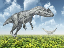 Allosaurus and Camarasaurus Stock Photos