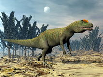 Allosaurus dinosaur - 3D render Royalty Free Stock Photo