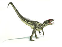 Allosaurus Dinosaurus, photorealistic representation, dynamic po Stock Image