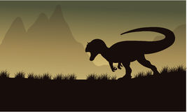 Allosaurus silhouette in fields Royalty Free Stock Image