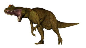 Allosaurusdinosaurus die 3D brullen - geef terug Stock Foto's