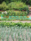Allotment Royalty Free Stock Image