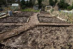 Allotment beds in Winter Stock Photography
