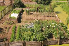 An allotment garden Stock Images