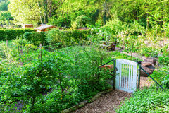Allotment garden in Bedburg Alt-Kaster, Germany Stock Image