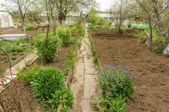 Allotment garden path Stock Photography