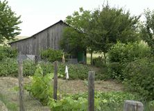Allotment garden and utility shed Royalty Free Stock Photos
