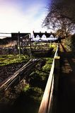 Allotment Royalty Free Stock Images